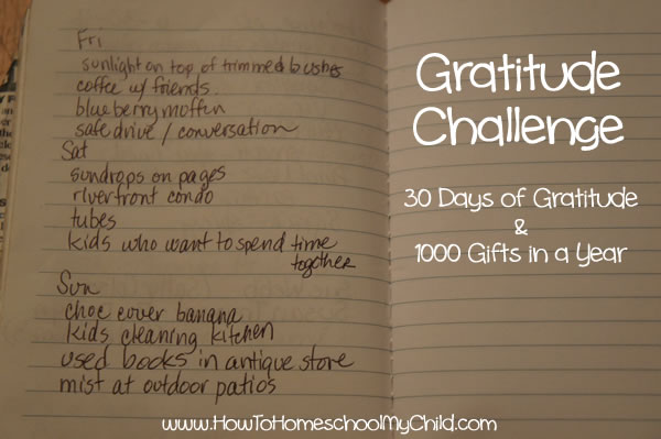one thousand gifts - 30 days of gratitude challenge
