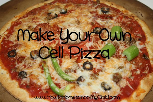 Animal-Cell-Models Pizza