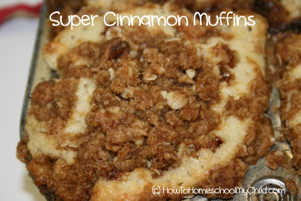 Brown Sugar Cinnamon Muffins - cooked single