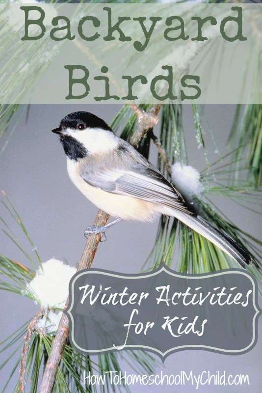 backyard birds - winter activities for kids  ~ from HowToHomeschoolMyChild.com