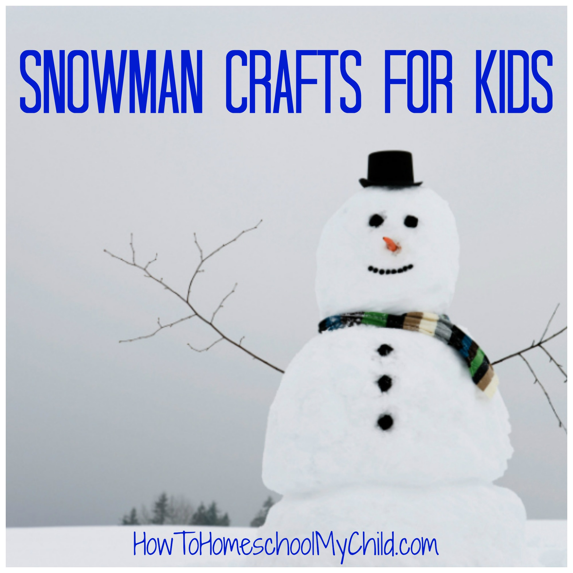 snowman crafts for kids ~ from HowToHomeschoolMyChild.com