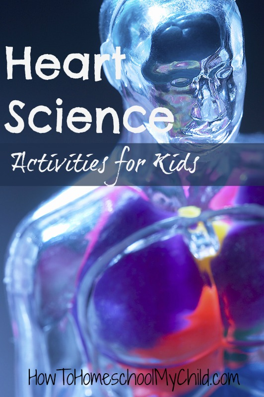heart science activities for kids - fun science for Valentine's Day ~ from HowToHomeschoolMyChild.com