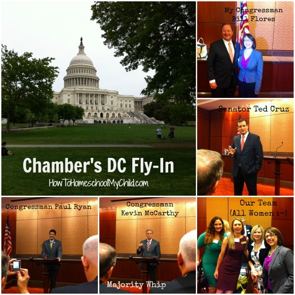BCS Chamber DC Fly In from HowToHomeschoolMyChild.com