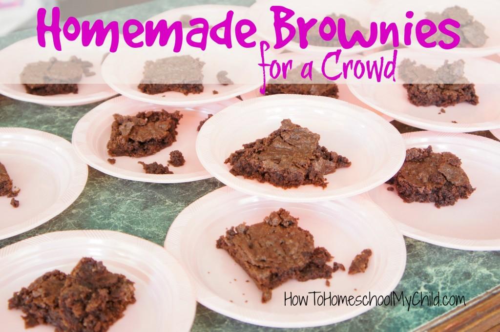 homemade brownies - easy recipe from HowToHomeschoolMyChild.com