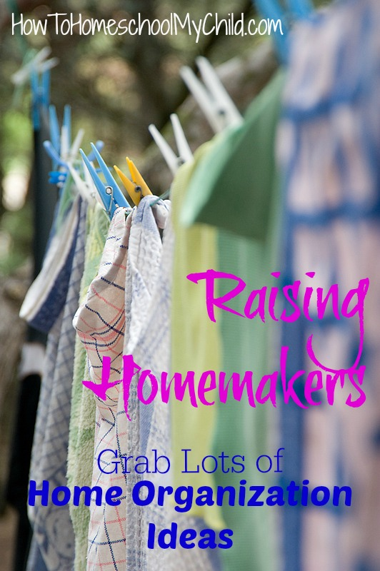 Looking for home organization ideas - Find lots at {Weekend Links} from HowToHomeschoolMyChild.com