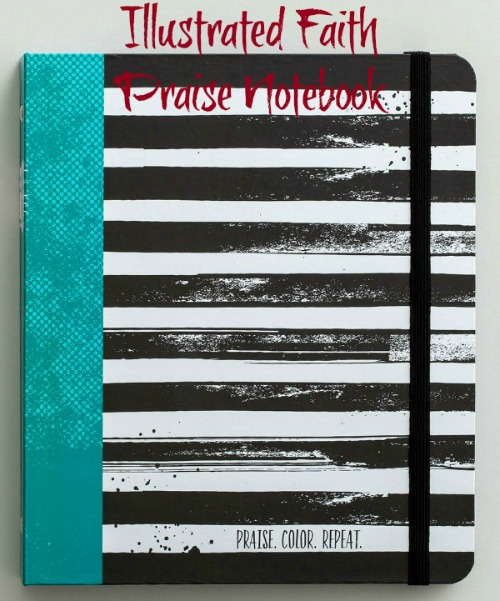 If you aren't ready to journal in your Bible, try this Praise Notebook from Illustrated Faith. Read more from HowToHomeschoolMyChild.com