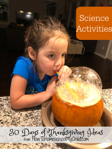 thanksgiving science activities, pumpkin bubbles, m&m pumpkin