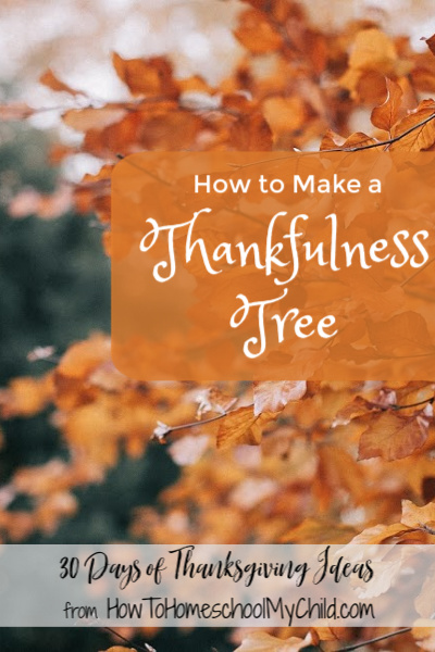 Blogger's are out in full force letting us on know how important this is. We need family traditions to pass down. In this day when we have so very much, we need to remind everyone to be grateful and appreciate it. I don't disagree, I felt overwhelmed.
