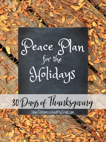 5 steps to a peace plan for the holidays - Thanksgiving & Christmas