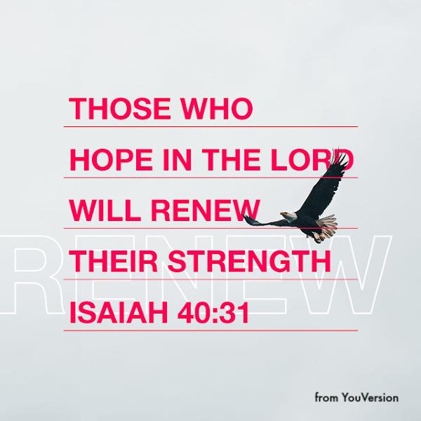 Hope in Jesus - Isaiah 40:31